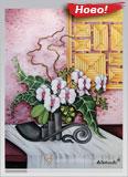 Орхидеи и алоказия